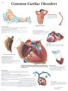 Laba piciorului inflamata cu dureri | Forumul Medical ROmedic